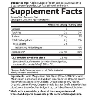 Garden of Life Dr. Formulated Whole Food Magnesium 419 g Orange